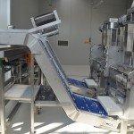 Plantas automática formas pasta Orecchiette
